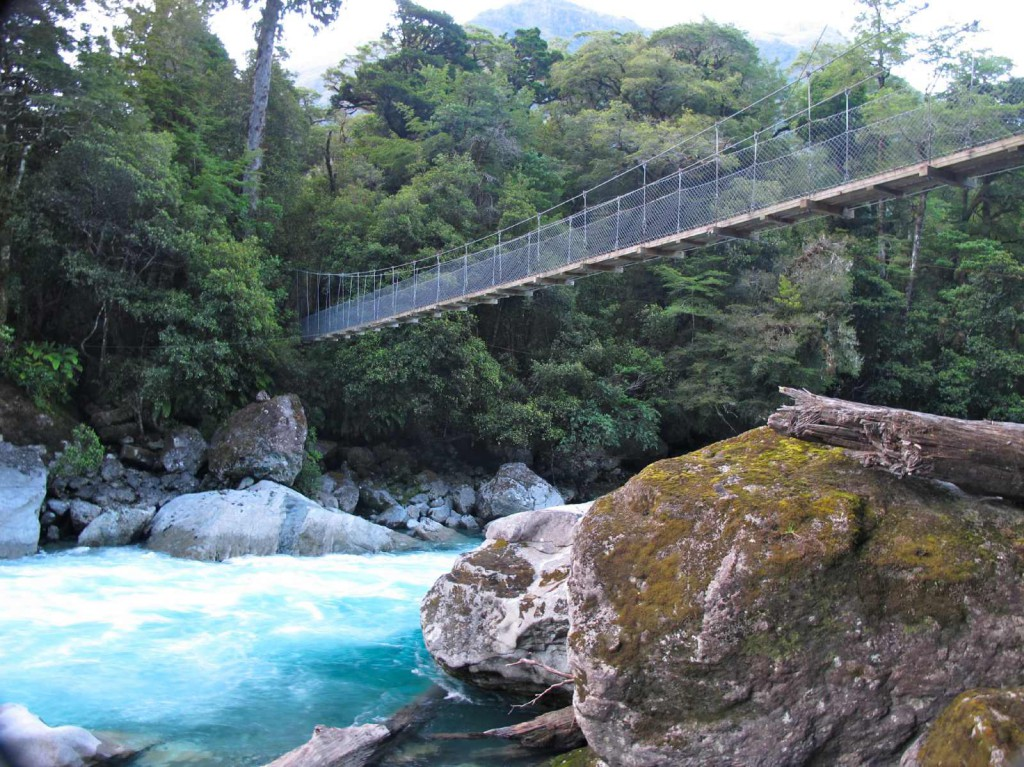 moraine-creek-track-swingbridge-over-the-hollyford-river